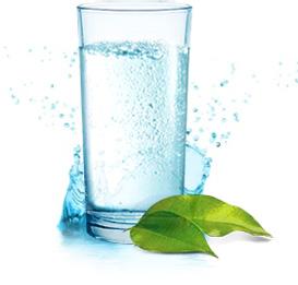 Стакан воды с листочками